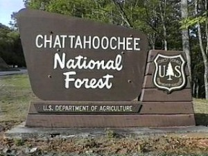 Chattahoochee Natural Forest